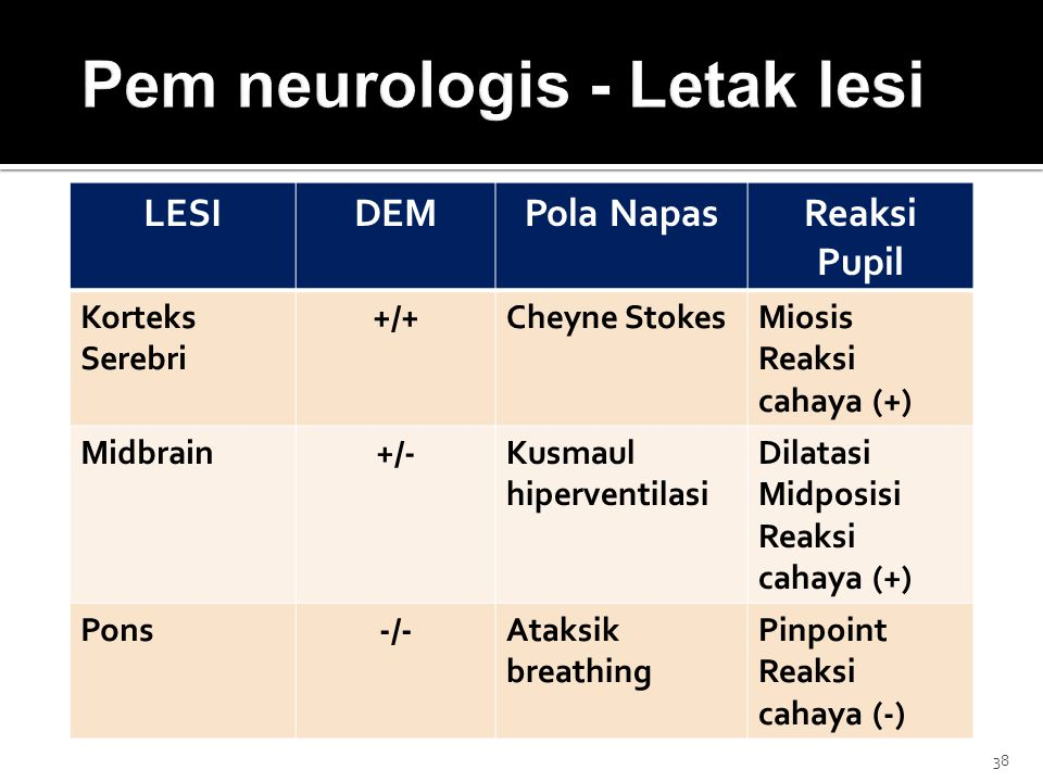 Pem neurologis - Letak lesi
