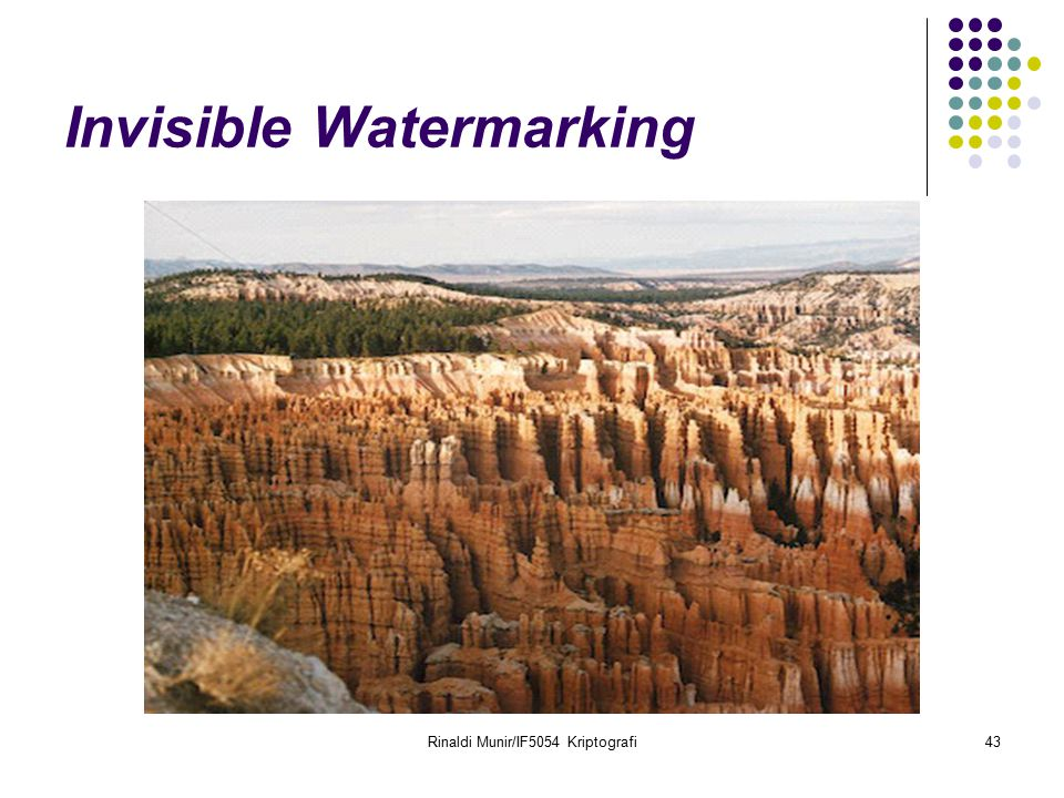 Invisible Watermarking