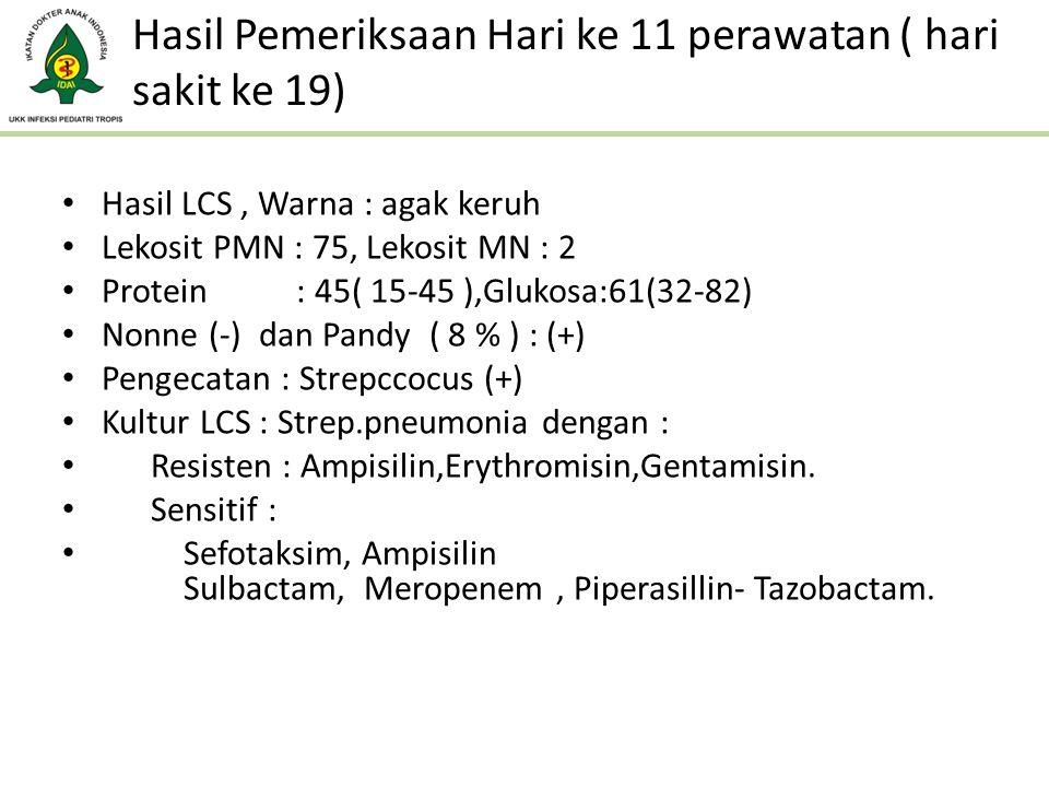 Hasil Pemeriksaan Hari ke 11 perawatan ( hari sakit ke 19)
