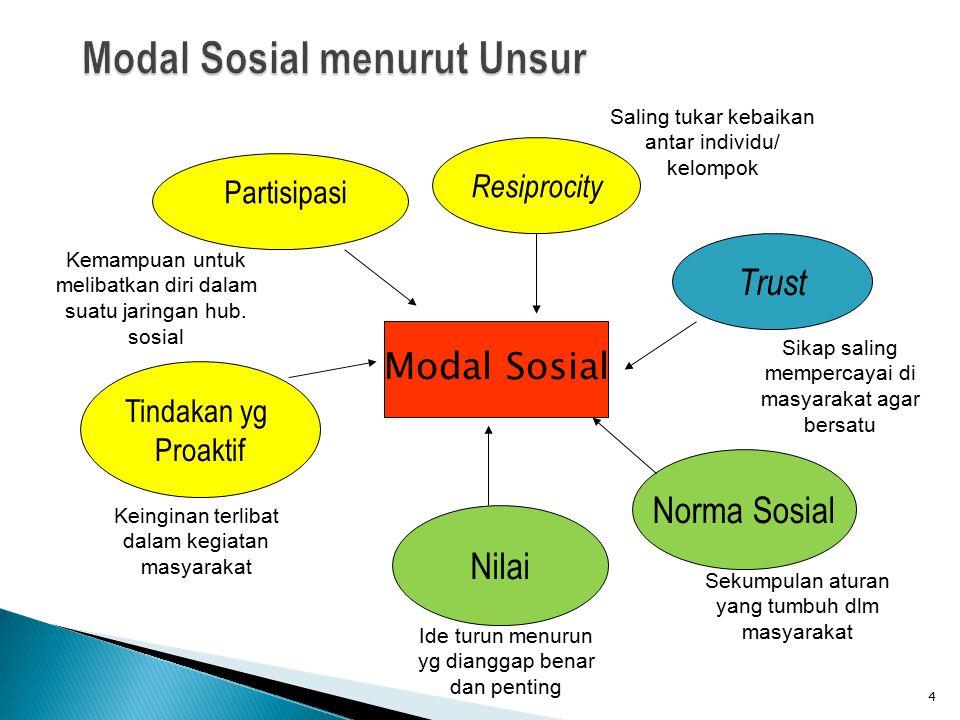 Modal Sosial menurut Unsur