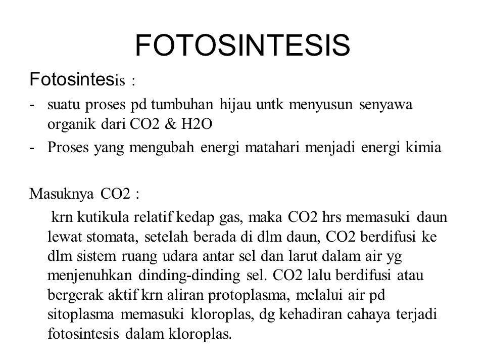 FOTOSINTESIS Fotosintesis :
