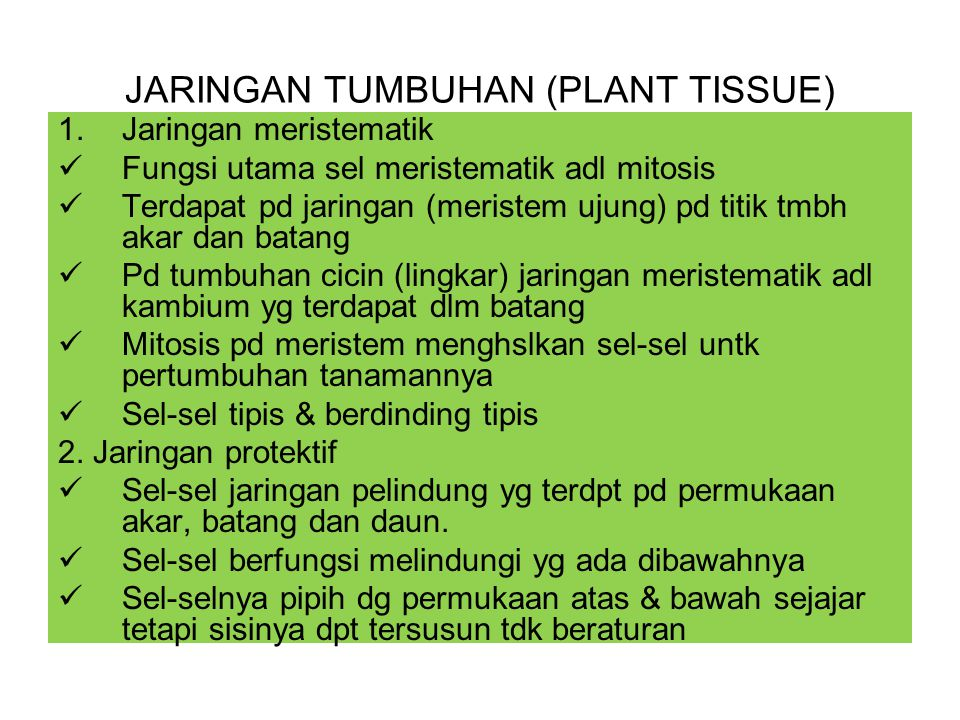 JARINGAN TUMBUHAN (PLANT TISSUE)