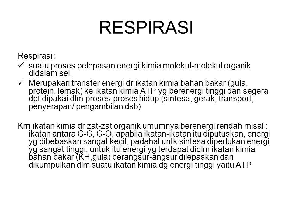 RESPIRASI Respirasi : suatu proses pelepasan energi kimia molekul-molekul organik didalam sel.