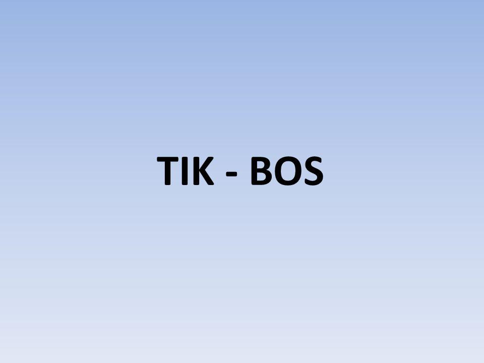 TIK - BOS