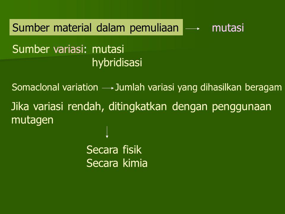 Sumber material dalam pemuliaan mutasi