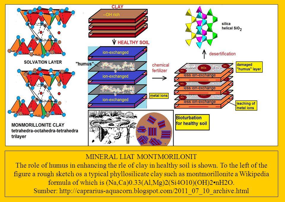 MINERAL LIAT MONTMORILONIT
