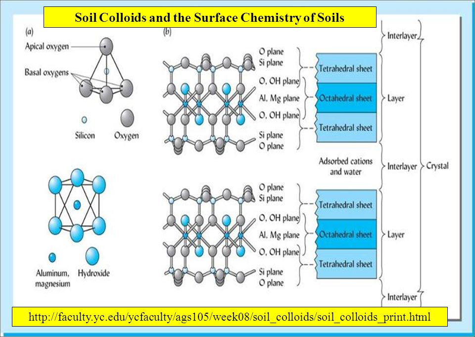 Soil Colloids and the Surface Chemistry of Soils