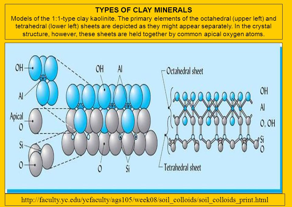 TYPES OF CLAY MINERALS