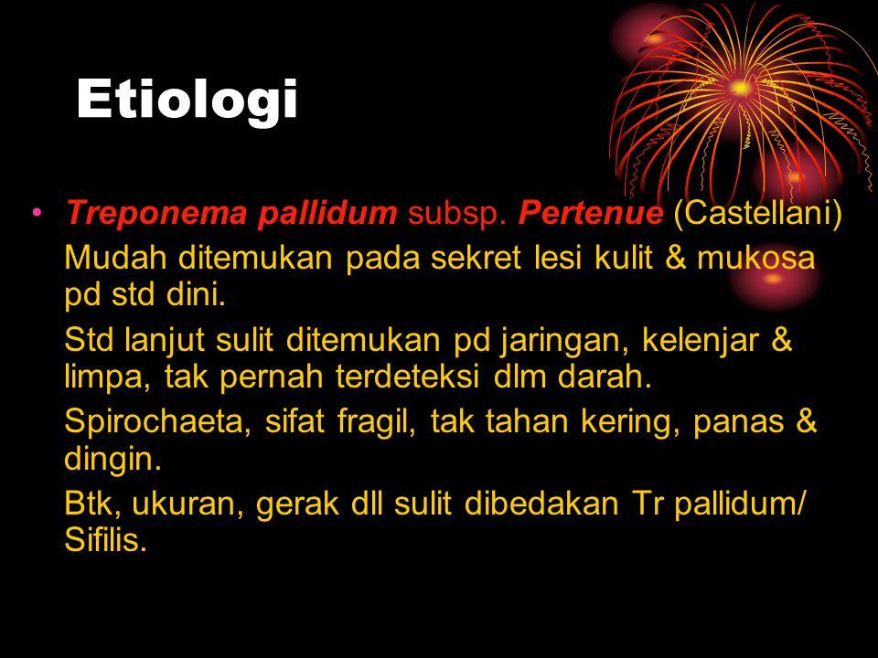 Etiologi Treponema pallidum subsp. Pertenue (Castellani)