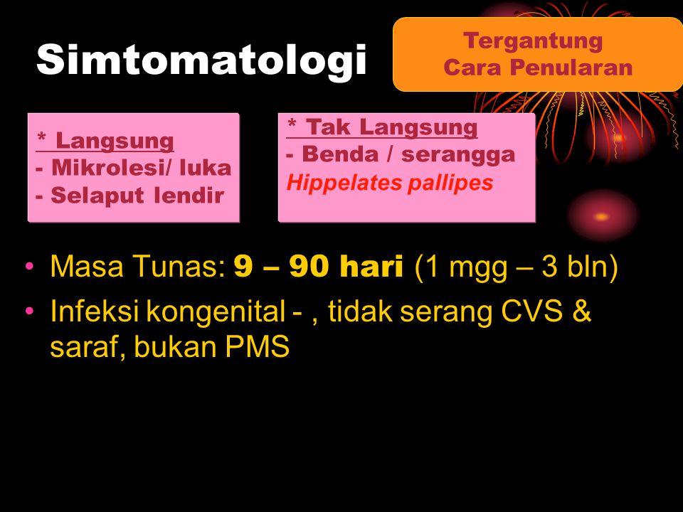 Simtomatologi Masa Tunas: 9 – 90 hari (1 mgg – 3 bln)