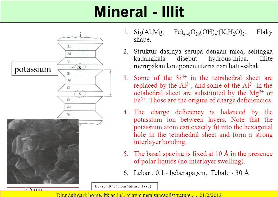 Mineral - Illit potassium