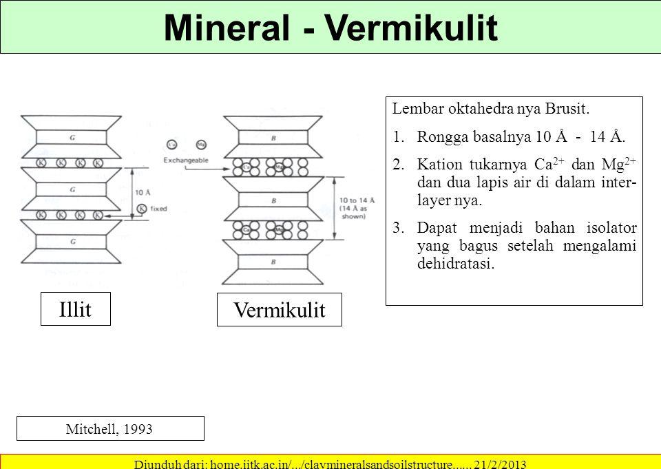 Mineral - Vermikulit Illit Vermikulit Lembar oktahedra nya Brusit.