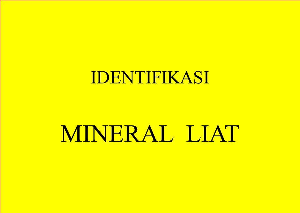IDENTIFIKASI MINERAL LIAT