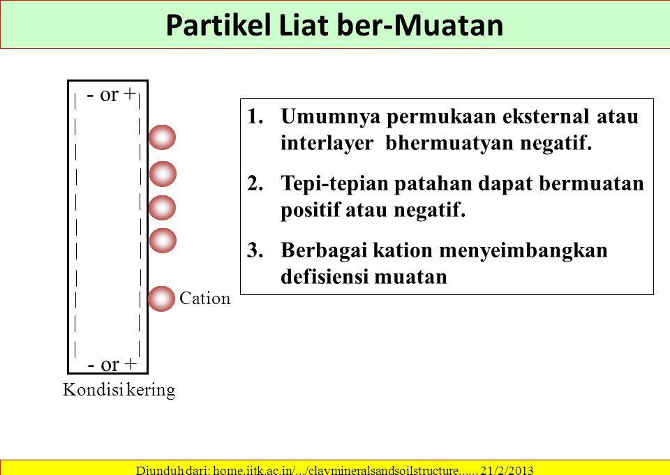 Partikel Liat ber-Muatan