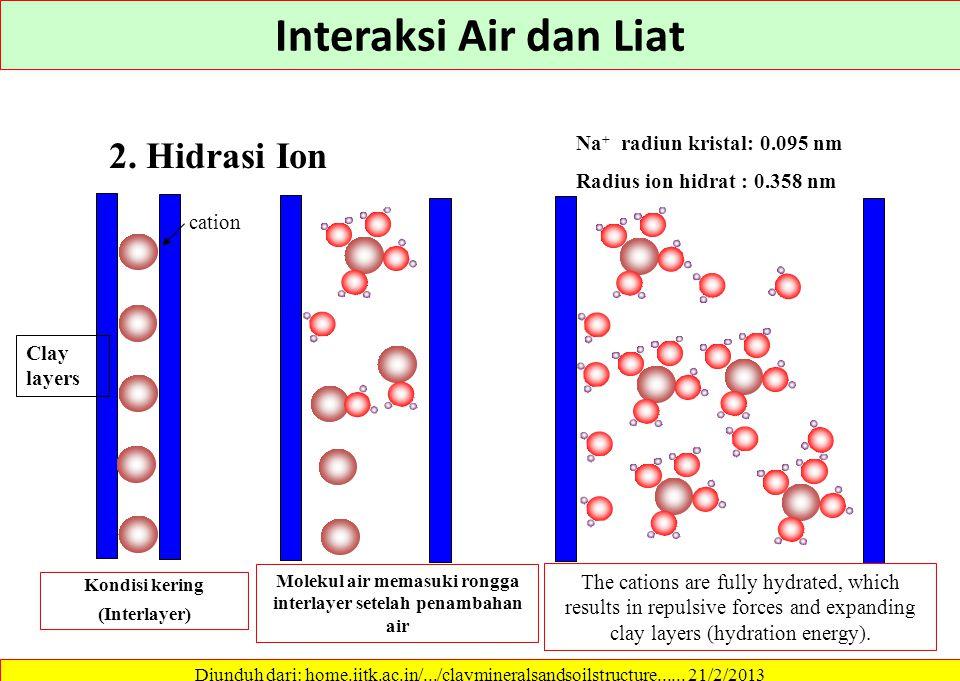 Molekul air memasuki rongga interlayer setelah penambahan air