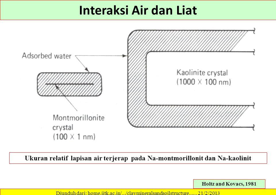 Interaksi Air dan Liat Ukuran relatif lapisan air terjerap pada Na-montmorillonit dan Na-kaolinit.