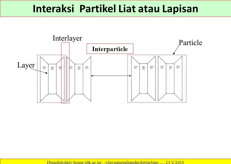 Interaksi Partikel Liat atau Lapisan