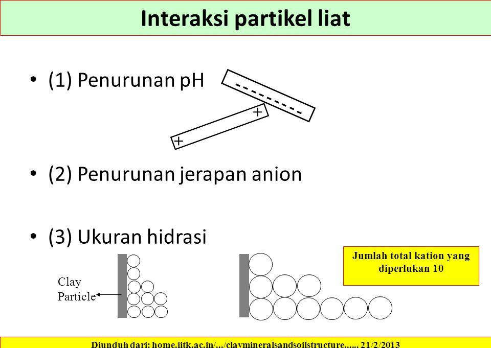Interaksi partikel liat Jumlah total kation yang diperlukan 10