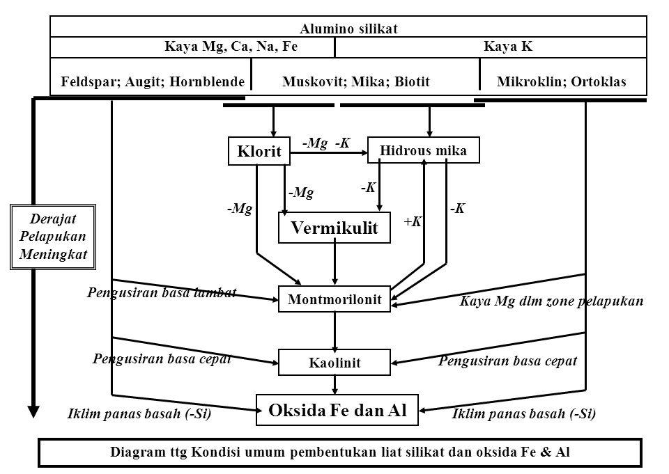 Vermikulit Oksida Fe dan Al