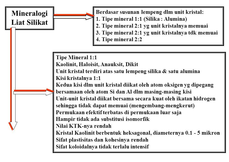 Mineralogi Liat Silikat