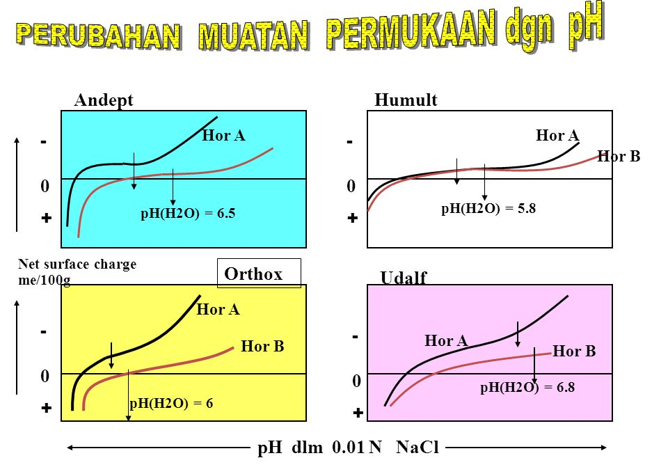 PERUBAHAN MUATAN PERMUKAAN dgn pH