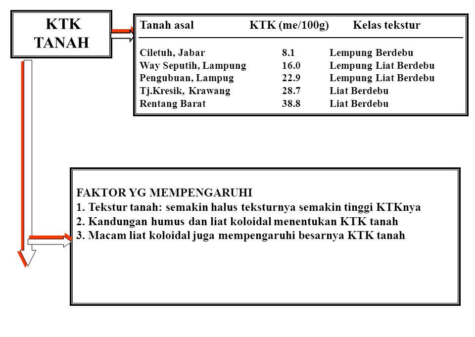 KTK TANAH Tanah asal KTK (me/100g) Kelas tekstur
