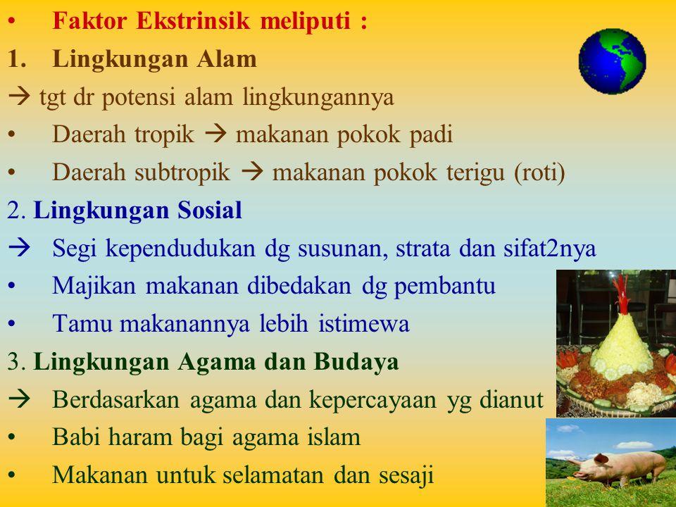 Faktor Ekstrinsik meliputi :