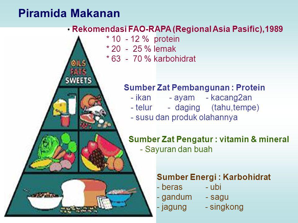 Piramida Makanan * 10 - 12 % protein * 20 - 25 % lemak