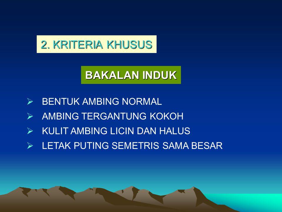 2. KRITERIA KHUSUS BAKALAN INDUK BENTUK AMBING NORMAL