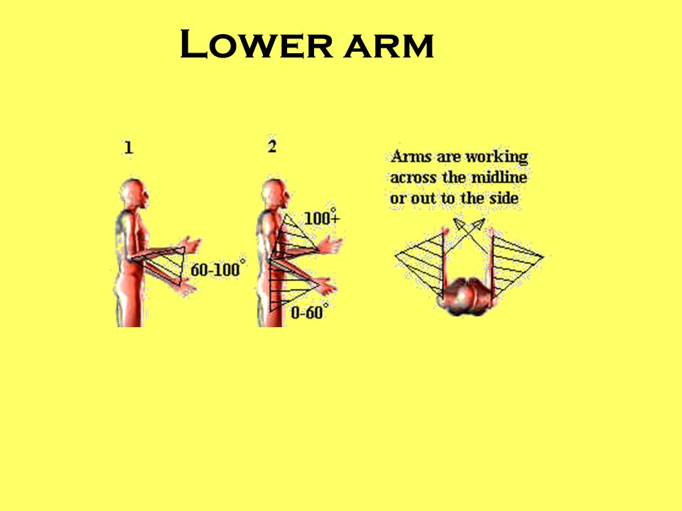 Lower arm