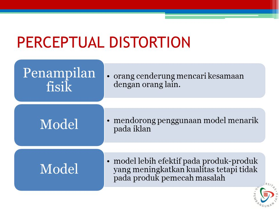 PERCEPTUAL DISTORTION