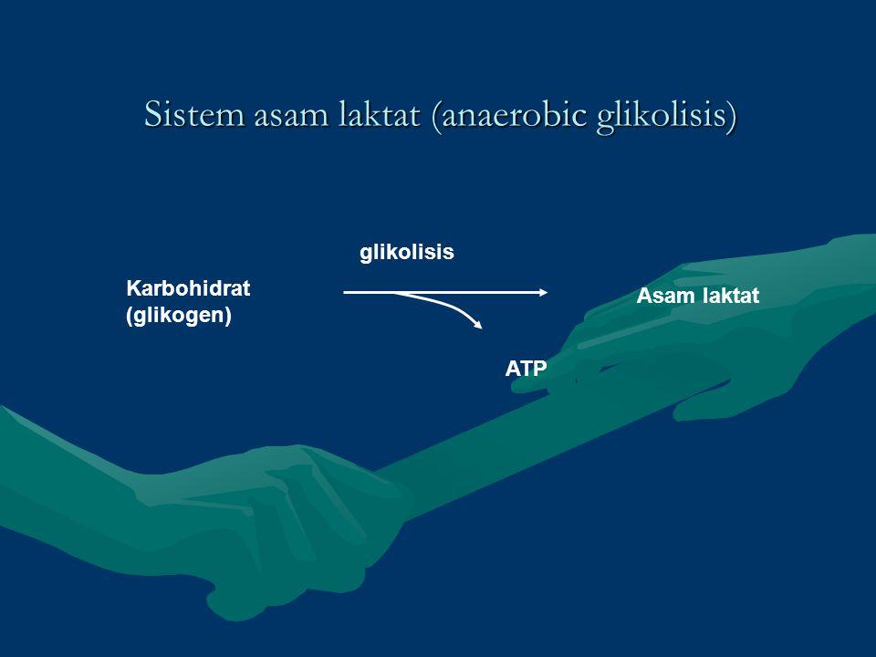 Sistem asam laktat (anaerobic glikolisis)