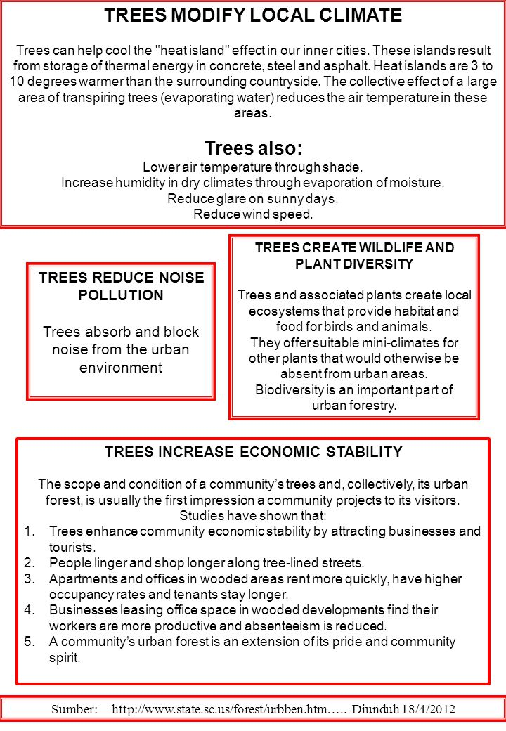 TREES MODIFY LOCAL CLIMATE Trees also: