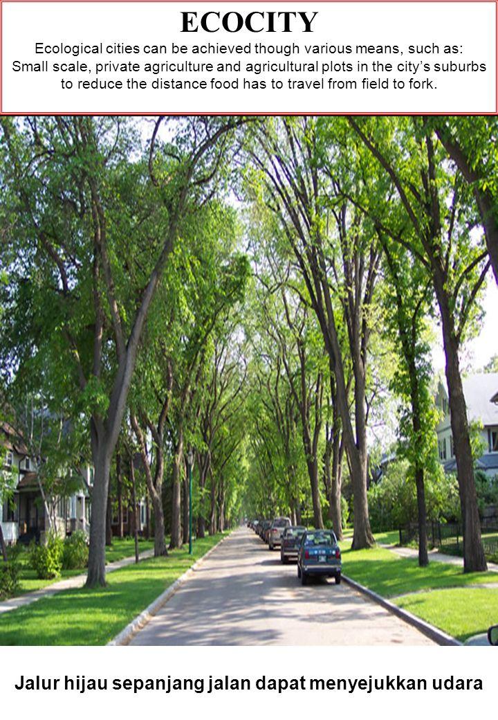 Jalur hijau sepanjang jalan dapat menyejukkan udara