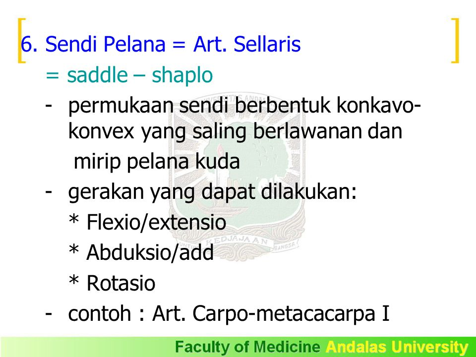 6. Sendi Pelana = Art. Sellaris