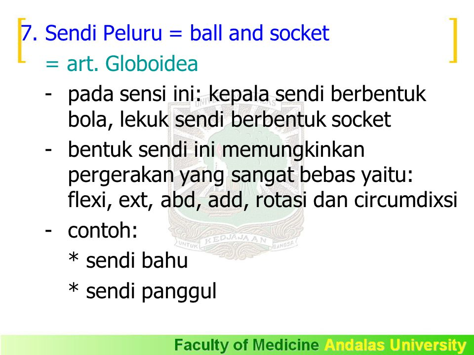 7. Sendi Peluru = ball and socket