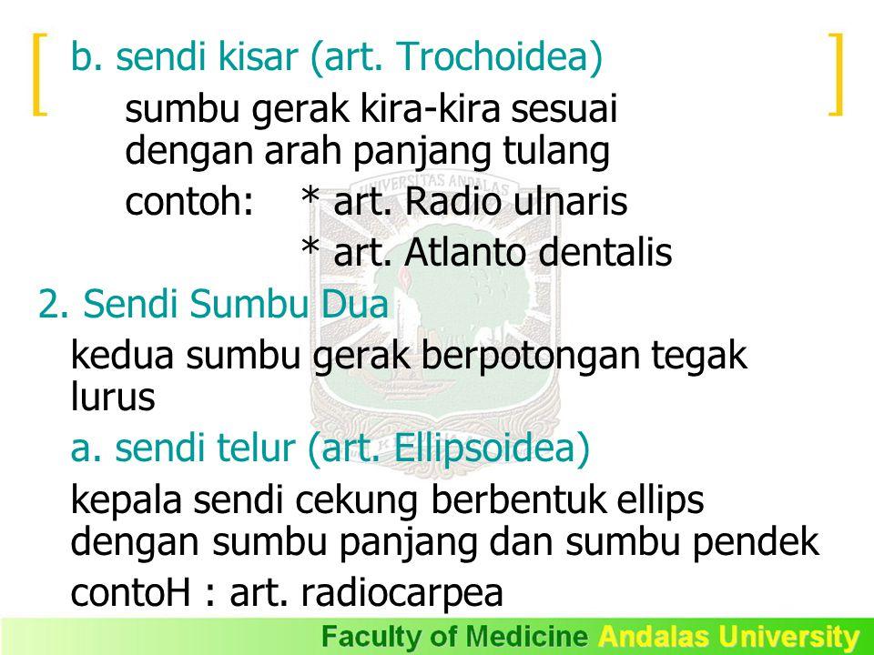 b. sendi kisar (art. Trochoidea)