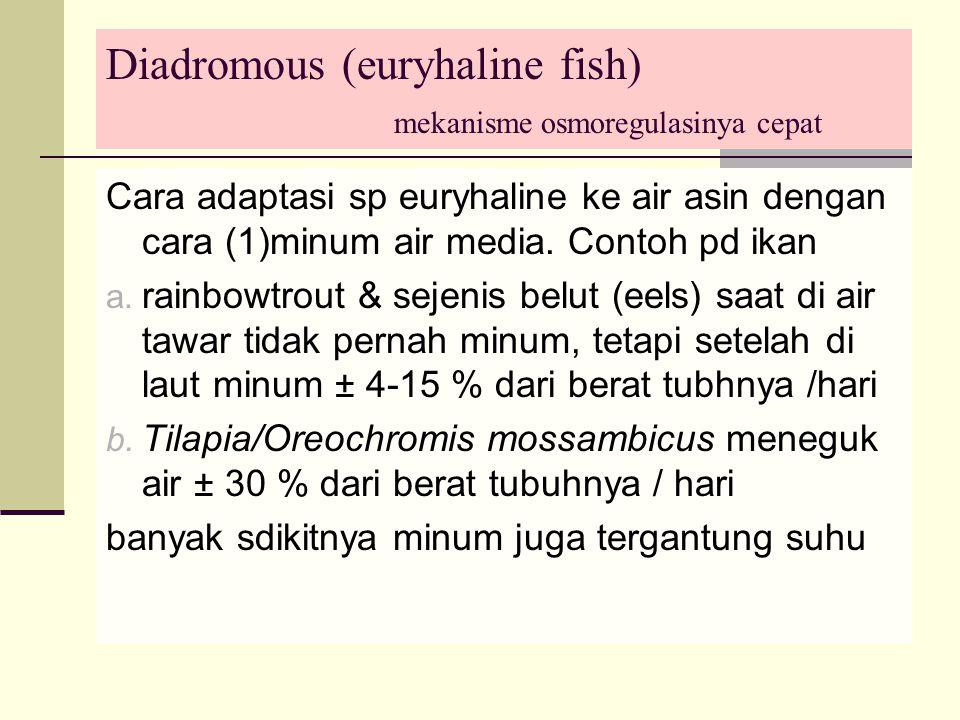 Diadromous (euryhaline fish) mekanisme osmoregulasinya cepat