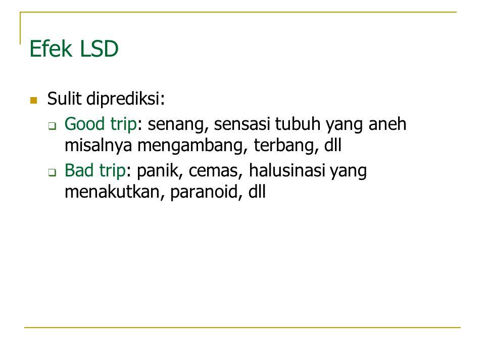 Efek LSD Sulit diprediksi: