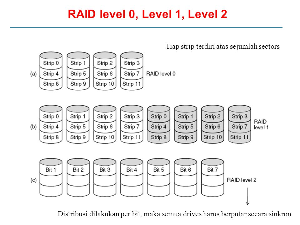 RAID level 0, Level 1, Level 2 Tiap strip terdiri atas sejumlah sectors.