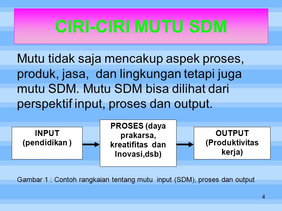 CIRI-CIRI MUTU SDM