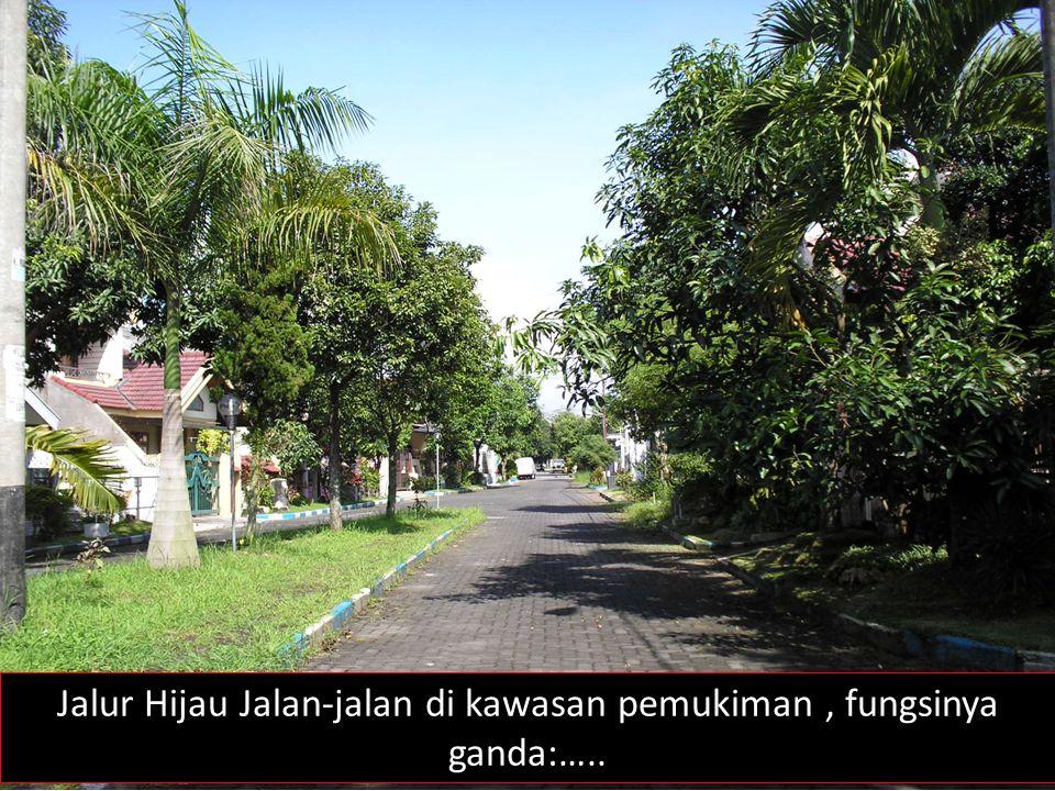 Jalur Hijau Jalan-jalan di kawasan pemukiman , fungsinya ganda:…..