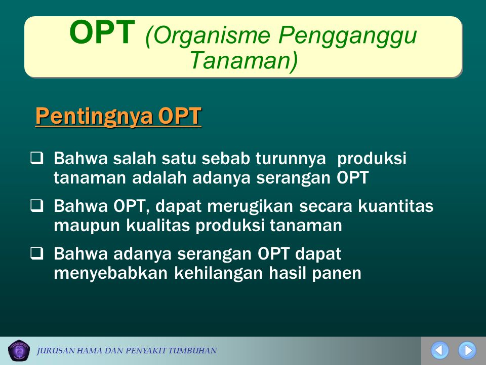 OPT (Organisme Pengganggu Tanaman)