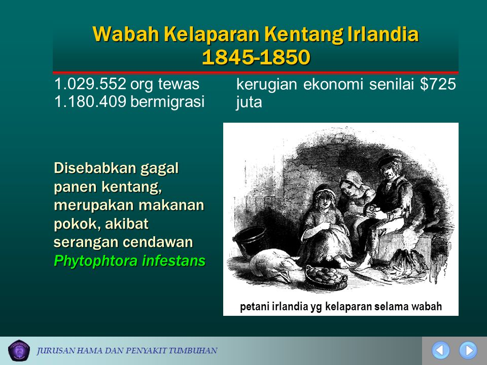Wabah Kelaparan Kentang Irlandia 1845-1850