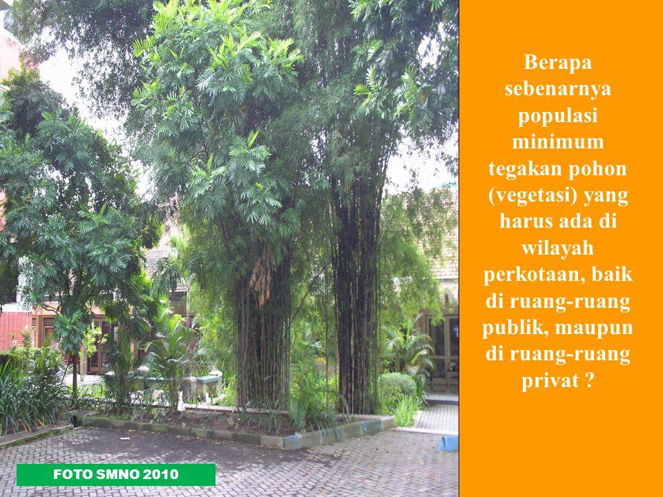 Berapa sebenarnya populasi minimum tegakan pohon (vegetasi) yang harus ada di wilayah perkotaan, baik di ruang-ruang publik, maupun di ruang-ruang privat