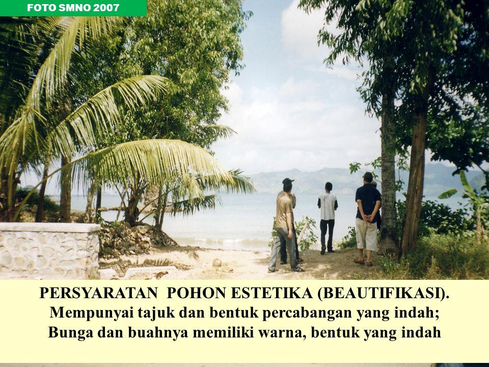 PERSYARATAN POHON ESTETIKA (BEAUTIFIKASI).