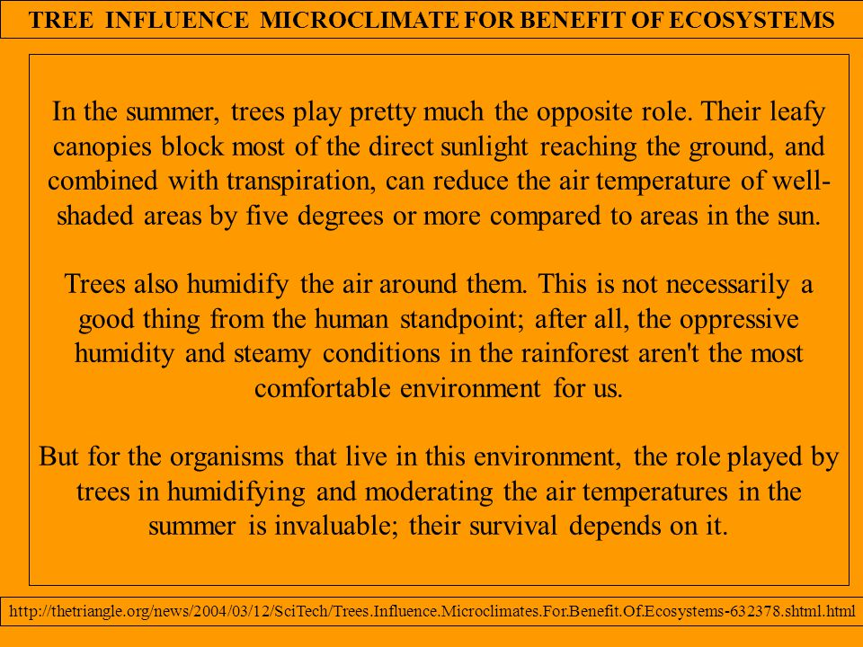TREE INFLUENCE MICROCLIMATE FOR BENEFIT OF ECOSYSTEMS