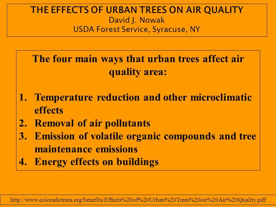 The four main ways that urban trees affect air quality area: