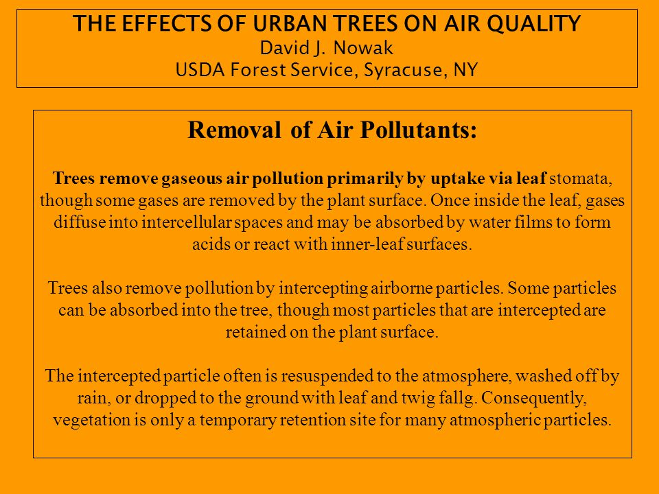 THE EFFECTS OF URBAN TREES ON AIR QUALITY Removal of Air Pollutants: