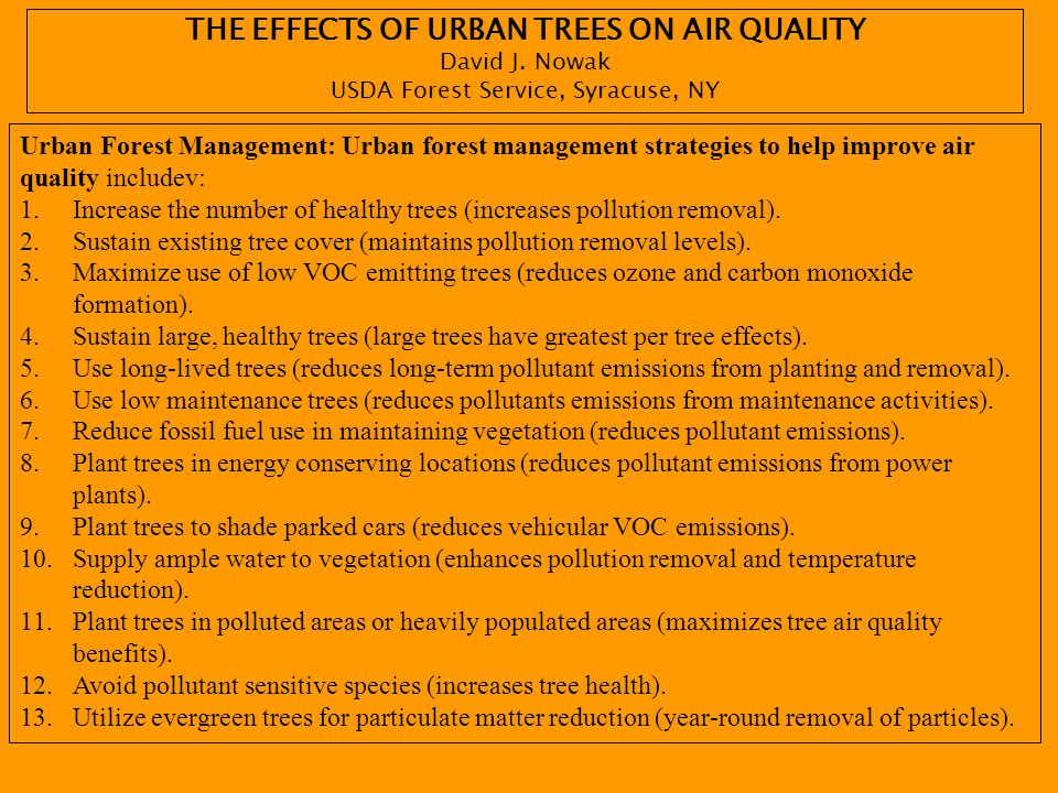 THE EFFECTS OF URBAN TREES ON AIR QUALITY